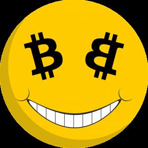Bitcoin Trader als Beruf wählen